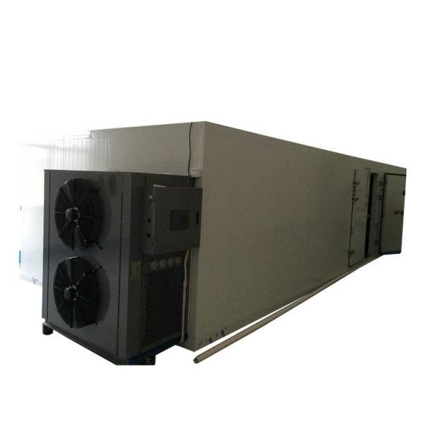 Food Drying Machine Industrial Vegetable & Fruit Dehydrator #1 image