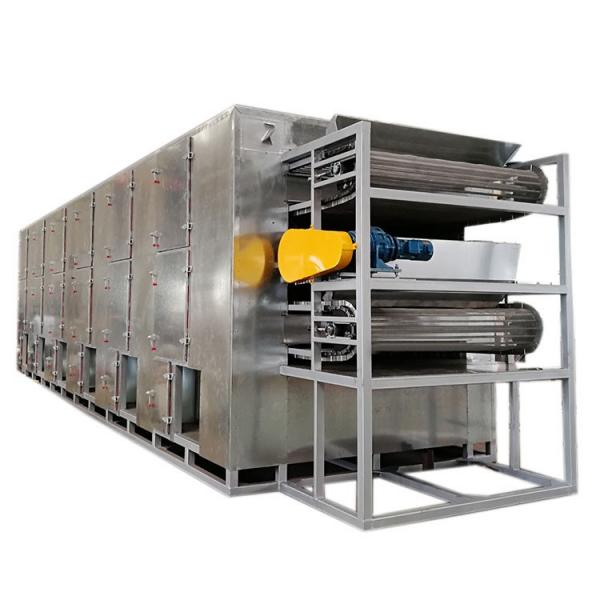 Fruit Vegetable Drying Machine Continuous Dryer #2 image
