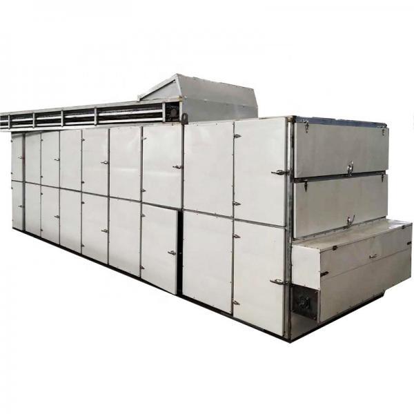 Industrial Hemp Hot Air Continuous Belt Fruit Dryer Vegetable Drying Machine #1 image