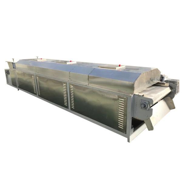Industrial Hemp Hot Air Continuous Belt Fruit Dryer Vegetable Drying Machine #3 image