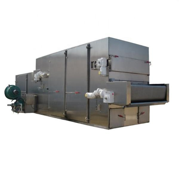 Fruit Vegetable Drying Machine Continuous Dryer #1 image