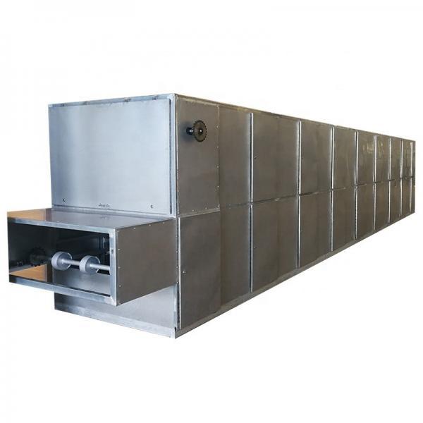 Industrial Hemp Hot Air Continuous Belt Fruit Dryer Vegetable Drying Machine #2 image