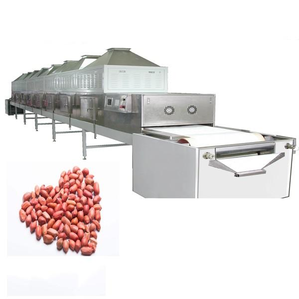 Industrial Agricultural Small Food Processing Freeze Drying Dryer Machine Equipment Price #1 image
